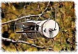 Original RollerFeeder - 1998