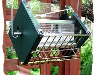 Roller Feeder 2 - Cardinal Green and Gold Squirrel Proof Bird Feeder