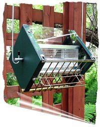 Roller Feeder 2 - Cardinal Green and Gold Squirrel Proof Bird Feeder